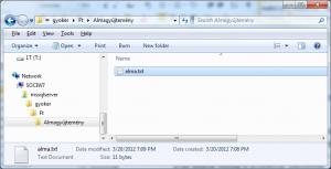 File Table in Windows Explorer